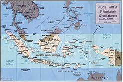 诺丽王印度尼西亚种植基地